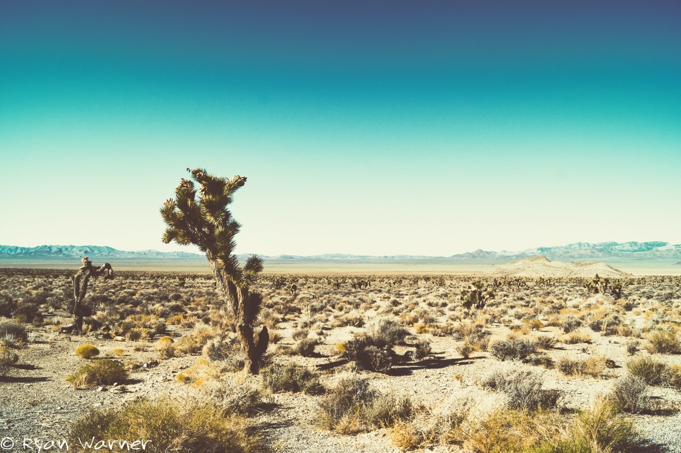 Ryan Warner - ET Highway #1 - Photography